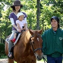 【ノーザンホースパーク】〜「馬と大地と、人との絆」をテーマにした自然公園〜当館より車で約70分