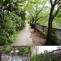 松川遊歩道へは歩いて7〜10分。森林浴や伊東の風情を楽しめます。
