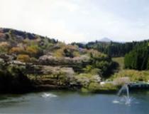 出の山公園
