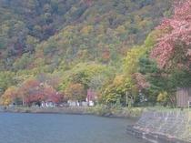 支笏湖 10月紅葉の頃