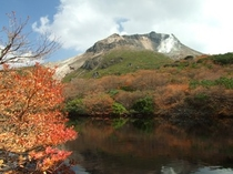 茶臼岳(秋)