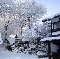 本伝雪景色