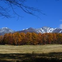 晩秋の八ヶ岳!澄んだ空気と青い空!