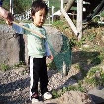 鷹山ファミリー牧場で魚のつかみ取り