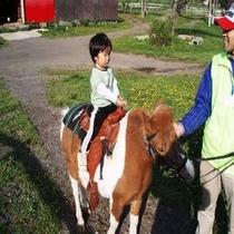 鷹山ファミリー牧場で乗馬