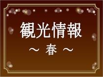 【観光情報~春~】