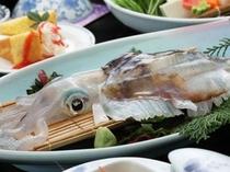 【四季彩・風華】甘みがある水イカの姿造り