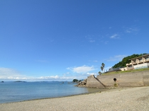 当館前には小さな砂浜があり磯遊びも楽しめます。