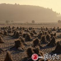 【秋】秋の南阿蘇の風景