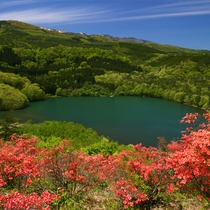 ツツジ山から見る女沼