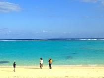 【周辺】泳げないシーズンは、珊瑚や貝殻を拾いながらゆったりとお散歩を。本当に気持ちが良いですよ♪