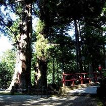 近隣パワースポット『逆さ杉と朱色の橋』