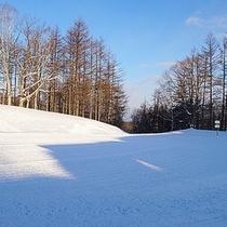 *ゲレンデ/当館からリフト乗り場まで続く雪原。