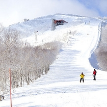 *ウィンタースポーツ/目の前がゲレンデなのでファミリーでも楽々スキー。