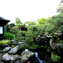 【庭】中庭のしつらえは約400年前「小堀遠州」によるものです。