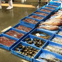 臼杵魚市場での競り風景