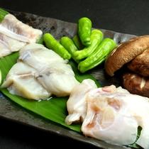 【フグコース単品】ぷりっぷりの食感をお楽しみください。