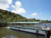 マングローブの林を通り抜け西表のジャングルへ