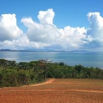 絵葉書のような西表島の風景