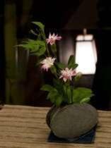 館内の生花