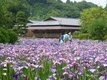 西山荘(当館よりお車で約30分)