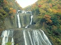 袋田の滝 (当館よりお車で20分)