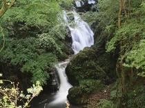 下滝(当館より徒歩7分)