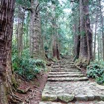 世界遺産熊野古道【大門坂】