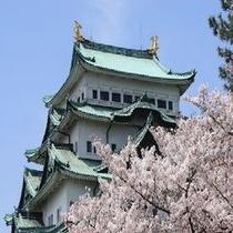 【安城駅前】名古屋城と桜♪