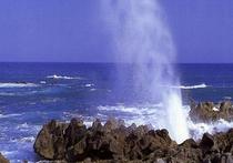 潮吹き岩(徒歩3分)
