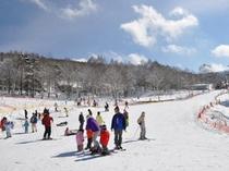 白樺リゾートスキー場