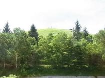 山側ルームから見える景色(夏)