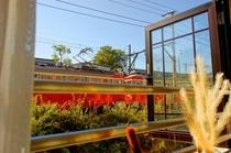窓から眺める箱根登山電車