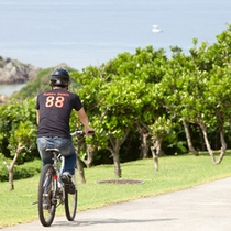 *マウンテンバイク/沖縄の風に吹かれながら、いろんな場所を探検
