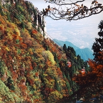 紅葉と御在所ロープウェイ