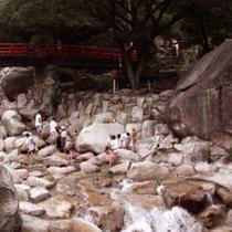 渓流遊び(大石公園) 車で約10分