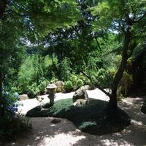 中庭『新緑』