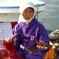 伊勢海老漁をするおばあちゃんは海女です