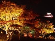 錦秋の玄宮園ライトアップ(彦根城内)  2016年11月12日~11月27日