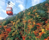 秋の御在所岳