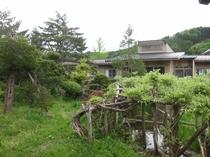 保養センター庭
