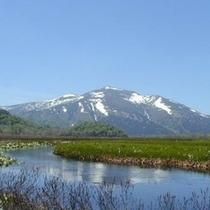【春*風景】水芭蕉と至仏山