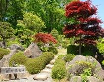 中庭の情緒ある日本庭園