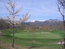 ゴルフコース4.jpg