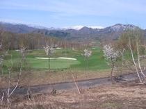 ゴルフコース5.jpg