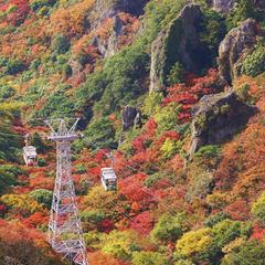【ポッキリプラン】秋旅に最適な小豆島一周観光バスがついてお一人様OK一万円!もちろん朝夕ご飯付