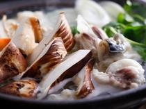 淡路島3年とらふぐと松茸のちり鍋