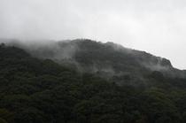 当館からの景色(風景)