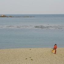 白浜海岸とマルと若女将