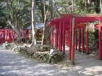 女性の願いをかなえる・・と今話題の「石神さん」がある神明神社